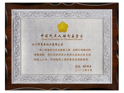 中国残疾人福利基金会感谢牌